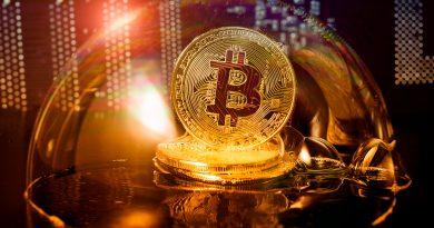 Anfängerkurse für Kryptoinvest